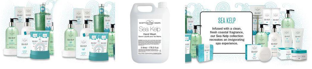 Sea Kelp Hand Wash Soap Hygiene 24 7